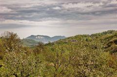 Monte Giogo (lugagnano) visto da Mignano IMG_1058
