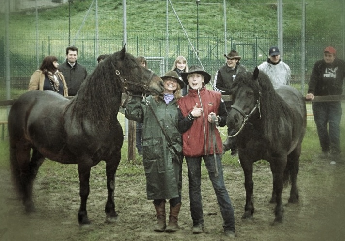 cavalli a morfasso......cavalle?