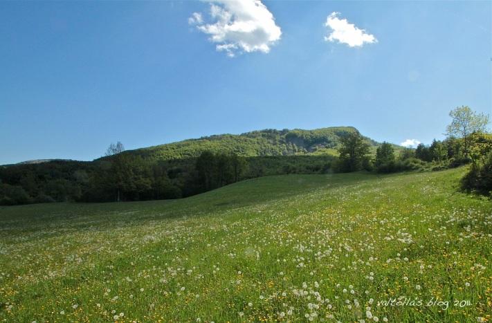 monte lama visto da Teruzzi