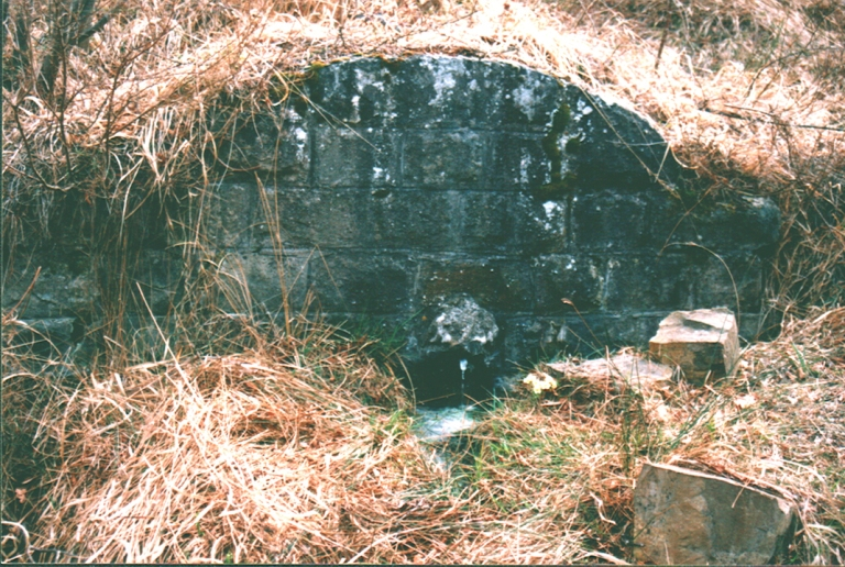 la fontana dell'acqua puzza