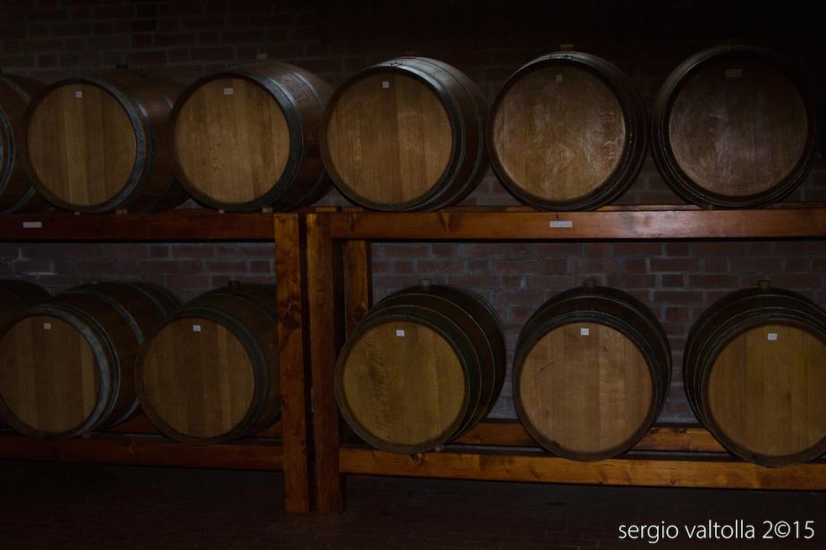 2015-10-il cibo- bacedasco e vigoleno 11-9143