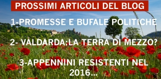 2016-05-07-papaveri a castello 2 bis-0355 copia.jpg