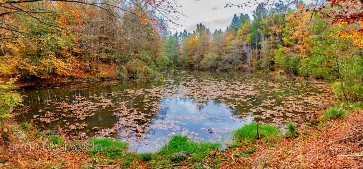 2018-10-lago del gallo1def1-1IMG_3212-Pano 2